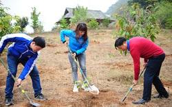 Trung ương Đoàn phát động Tết trồng cây