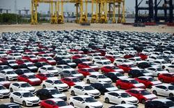 Tạm dừng giấy phép kinh doanh đối với doanh nghiệp nhập khẩu ô tô có bản đồ vi phạm chủ quyền