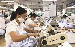 Hiệp định EVFTA: Doanh nghiệp Việt Nam cần lưu ý gì?