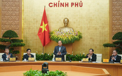 Thủ tướng: Chính sách, biện pháp gì để tháo gỡ cho chế biến nông sản?