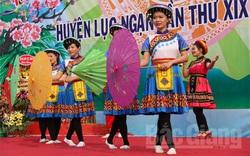 Bảo tồn và phát huy giá trị văn hóa của các dân tộc thiểu số tại Bắc Giang