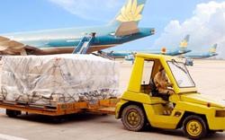 Noibai Cargo (NCT) chốt danh sách cổ đông tạm ứng cổ tức bằng tiền tỷ lệ 40%