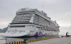 Đà Nẵng thông tin về tàu World Dream có cập cảng Tiên Sa: Chưa phát hiện trường hợp nào có biểu hiện lây nhiễm virus corona.