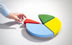 NVL, VPB, REE, RIC, GTN, TMS, DGC, HJS, NED, D11: Thông tin giao dịch lượng lớn cổ phiếu