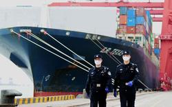 Khủng hoảng container làm khó kinh tế toàn cầu thời đại dịch corona