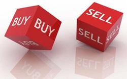 MWG, HPG, NLG, MCH, SHI, BCG, SKG, SVI, ADG, AMP, BVN, VTC, SIC: Thông tin giao dịch lượng lớn cổ phiếu