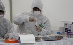 Thêm ca mắc COVID-19 (BN256 - 257): 1 học sinh là con của bạn BN243 tại Mê Linh, 1 người từ nước ngoài về