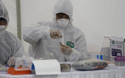 60 giờ qua, Việt Nam không phát hiện thêm ca mắc COVID-19