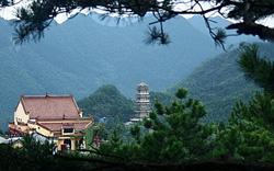 Bộ VHTTDL thẩm định Báo cáo kinh tế - kỹ thuật tu bổ, tôn tạo di tích chùa Từ Tâm, TP. Đà Nẵng