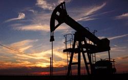 Giá dầu lao dốc tạo ra một cú sốc mới cho thế giới đang bị tê liệt bởi Covid-19