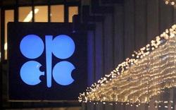 Mexico 'dứt áo ra đi': Nguy cơ Saudi và Nga không thể chốt hạ khủng hoảng giá dầu