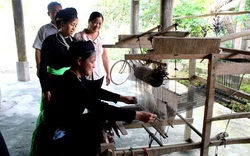 Bảo tồn văn hoá truyền thống và nâng cao chất lượng dịch vụ các làng văn hoá du lịch cộng đồng, phát triển công nghiệp văn hoá