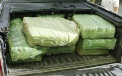 Quảng Bình: Phá chuyên án vận chuyển hơn 3 tạ ma túy đá