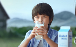 Dalatmilk: Dòng sữa tinh khiết 'di sản từ cao nguyên'