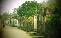 Thanh Hóa: Triển khai lập Đề án nghiên cứu bảo tồn di sản văn hóa làng cổ Đông Sơn