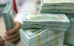 Đầu tuần, USD ngân hàng tăng giá trở lại