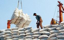 Thủ tướng yêu cầu Thanh tra Chính phủ vào cuộc vụ xuất khẩu gạo