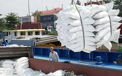 Rà soát, xử lý theo pháp luật doanh nghiệp khai khống để đăng ký hạn ngạch xuất khẩu gạo