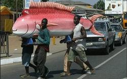 Châu Phi nổi tiếng với những thứ độc đáo để giảm không khí u buồn của đám tang