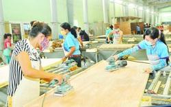Giải pháp cho ngành gỗ Việt phục hồi hậu đại dịch Covid-19