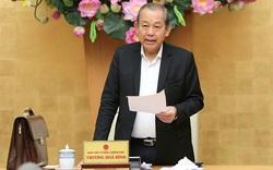 Phó Thủ tướng: Kiên quyết giải thể, phá sản các dự án không thể phục hồi, càng xử lý càng lỗ vốn