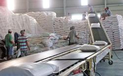 Thanh tra Chính phủ chính thức thanh tra việc xuất khẩu gạo