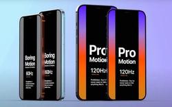 Tò mò cực độ về iPhone 12 Pro: Màn hình ProMotion 120Hz, pin lớn hơn, Face ID cải tiến và camera zoom quang 3x