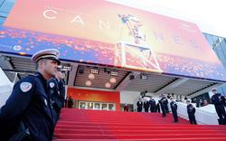 Liên hoan phim Cannes 2020 thay đổi cách tổ chức vì Covid-19