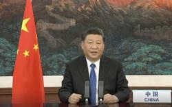 Lần đầu công khai biện hộ cho Trung Quốc, Chủ tịch Tập tiết lộ một