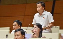 Đại biểu đề xuất để Bộ VHTTDL quản lý nhà nước về lĩnh vực thanh niên
