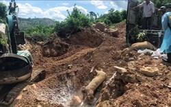 Kinh hãi: Phát hiện phương tiện vận chuyển lợn chết đi tiêu thụ