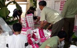 Xử phạt cơ sở bán giấy vệ sinh xâm phạm quyền đối với nhãn hiệu