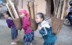 Huế tiếp nhận dự án viện trợ ngăn chặn việc trẻ em bị lạm dụng sức lao động