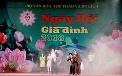 Nhiều hoạt động đặc sắc trong Ngày hội Gia đình Việt Nam 2020