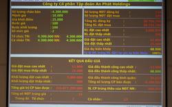 An Phát Holdings: IPO thành công 4,3 triệu cổ phiếu, giá chào mua gấp đôi giá khởi điểm