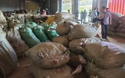 """Phát hiện khoảng 100 tấn dược liệu nhập từ Trung Quốc """"đội lốt"""" hàng nông sản"""