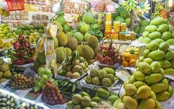 Khuyến nghị doanh nghiệp đảm bảo quy định khi xuất khẩu sang Trung Quốc