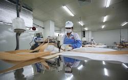 Điều kiện giới thiệu doanh nghiệp dịch vụ đưa người lao động đi làm việc tại Đài Loan, Nhật Bản là gì?