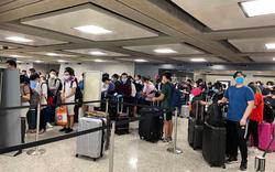 346 công dân Việt từ Mỹ về nước an toàn