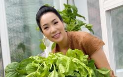 Vườn rau xanh mướt mắt của á hậu Trịnh Kim Chi