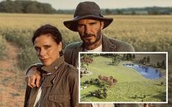 Gia đình cựu danh thủ David Beckham bị hàng xóm phản ứng dữ dội vì quyết định xây hồ nước