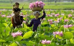 Kế hoạch phát triển sự nghiệp văn hóa năm 2021 trên địa bàn tỉnh Đồng Tháp