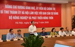 """Bộ trưởng Nguyễn Xuân Cường: Nông dân Hà Nội phải là """"nông dân 4.0"""""""