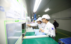 17,6 tỷ đồng thực hiện chương trình mục tiêu giáo dục nghề nghiệp, việc làm và an toàn lao động