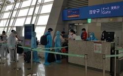 Đưa hơn 230 công dân Việt từ Hàn Quốc về nước