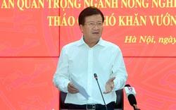 Phó Thủ tướng đề nghị tập trung tái cấu trúc ngành nông nghiệp