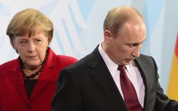 Lãnh đạo đối lập Nga nghi bị đầu độc: Berlin càng