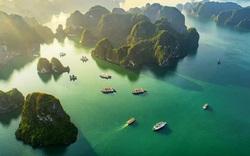 Tổ chức cuộc thi ảnh Việt Nam 2020