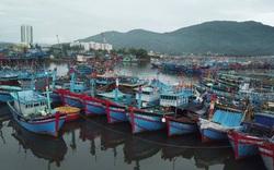 Đà Nẵng sẵn sàng ứng phó với bão số 5 và mưa lớn
