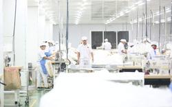 Thủ tướng chỉ đạo thúc đẩy sản xuất, tiêu dùng